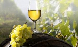Прессование белого вина - фото 1