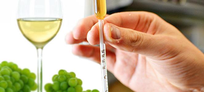 Брожение вина - фото 1