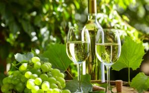 Способы сбора белого винограда - фото 2