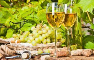 Способы сбора белого винограда - фото 4