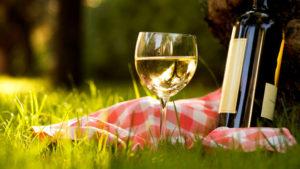 Типы белых вин и их отличия - фото 2